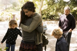 'Beautiful Boy' plumbs the depths of parental love